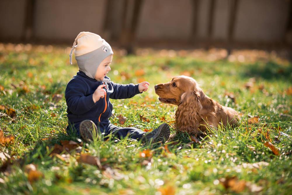 Son muchas las ventajas de la convivencia de niños con animales